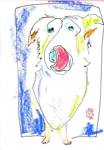Doggie Days051