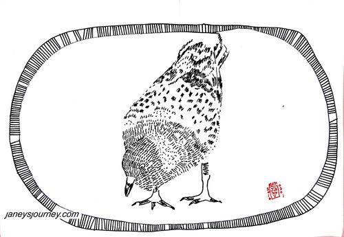 Pigeon159