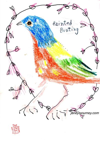 Painted bunting2173