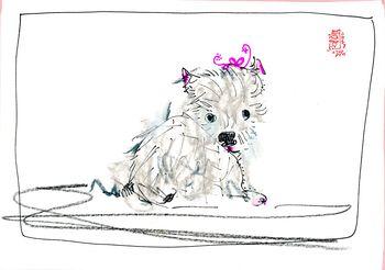 Doggie Days045
